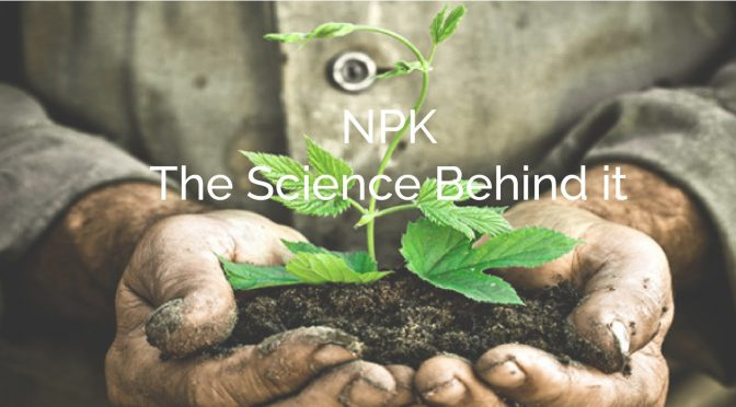 NPK – The Science, What They Are and What They Do