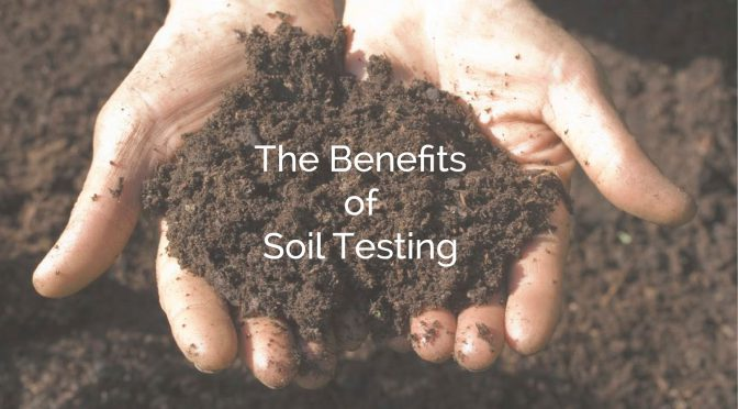 The Benefits of Soil Testing, Why & How!