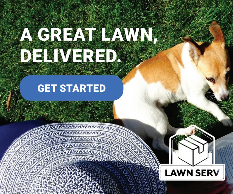 Best Lawn Process