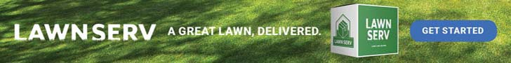 Treat Bugs in lawn