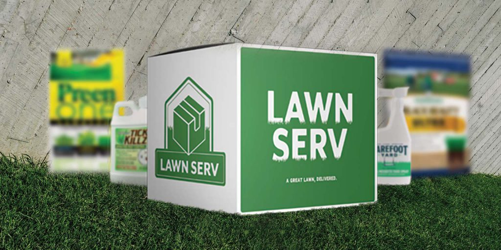How to get a great lawn