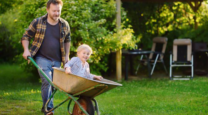 Spring Lawn care checklist