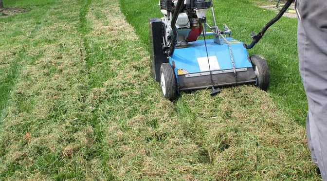 Fall Dethatching & Overseeding