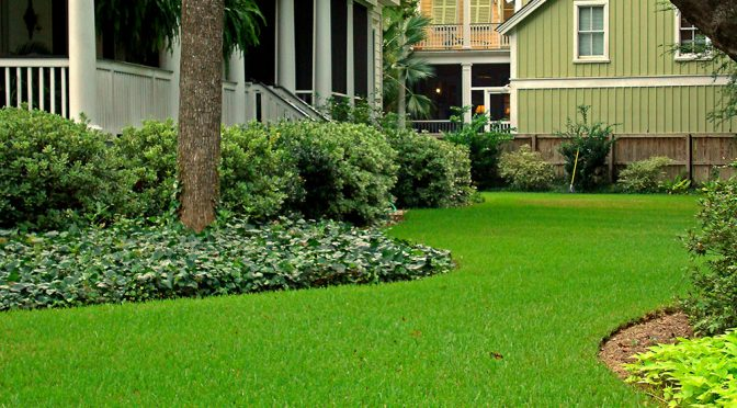 Fall Lawn Tips – Warm-season Grass Types: